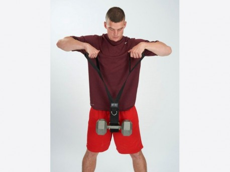Delt-Belt Dumbbell Upright Row or Cable Attachment